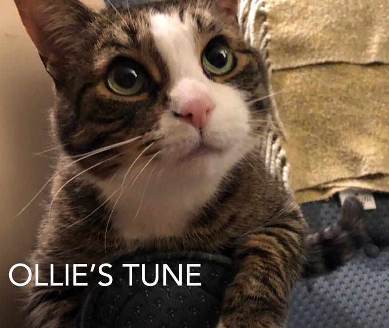Ollie's Tune